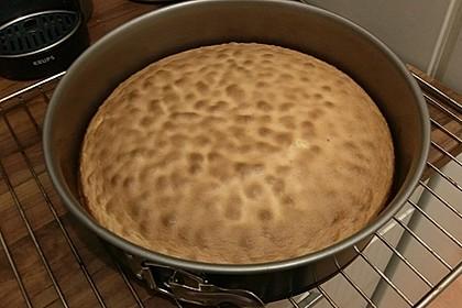 Biskuit - Grundrezept, mit Vanillepudding (Bild)