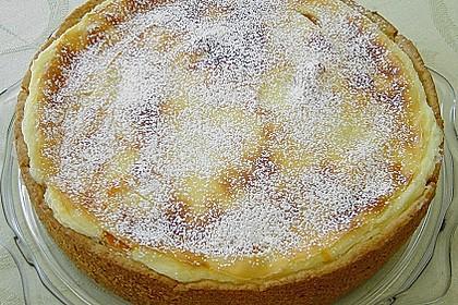 Mandarinen - Schmand - Pudding - Kuchen 51