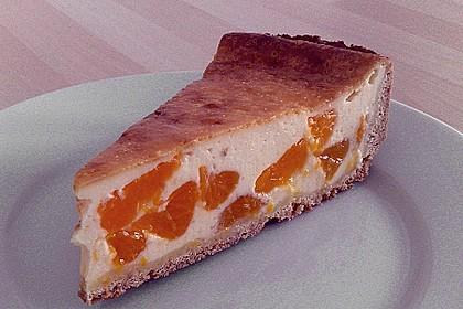 Mandarinen - Schmand - Pudding - Kuchen 48