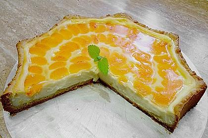 Mandarinen - Schmand - Pudding - Kuchen 18