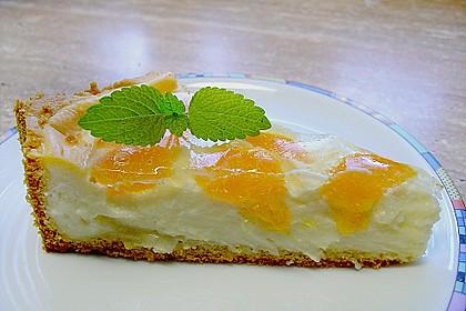 Mandarinen - Schmand - Pudding - Kuchen 45