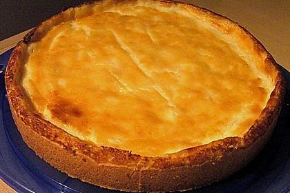 Mandarinen - Schmand - Pudding - Kuchen 52