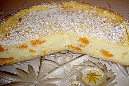 Mandarinen - Schmand - Pudding - Kuchen 16