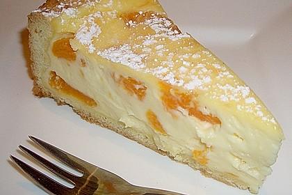 Mandarinen - Schmand - Pudding - Kuchen 10