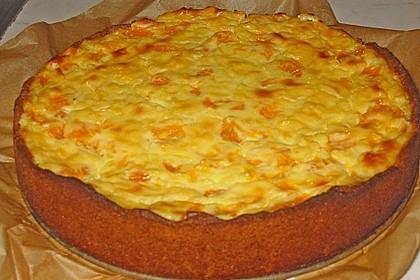 Mandarinen - Schmand - Pudding - Kuchen 53