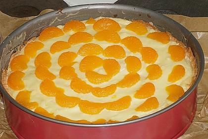 Mandarinen - Schmand - Pudding - Kuchen 31