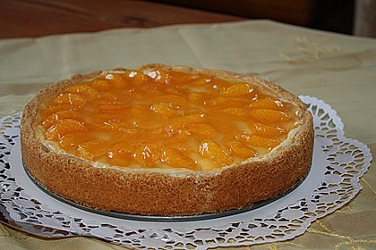 Mandarinen - Schmand - Pudding - Kuchen 27