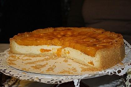 Mandarinen - Schmand - Pudding - Kuchen 43