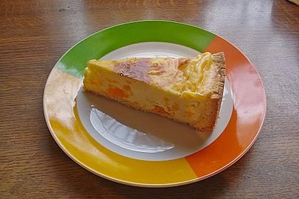 Mandarinen - Schmand - Pudding - Kuchen 35