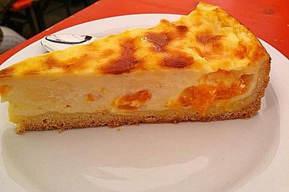 Mandarinen - Schmand - Pudding - Kuchen 39
