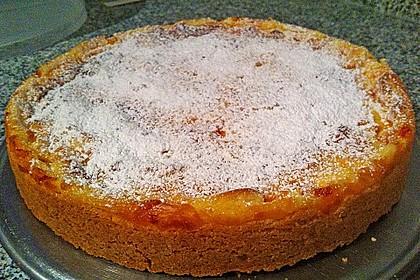 Mandarinen - Schmand - Pudding - Kuchen 36
