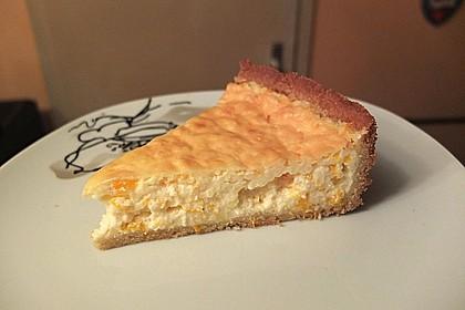 Mandarinen - Schmand - Pudding - Kuchen 42