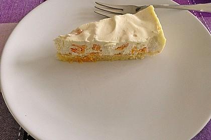 Mandarinen - Schmand - Pudding - Kuchen 38
