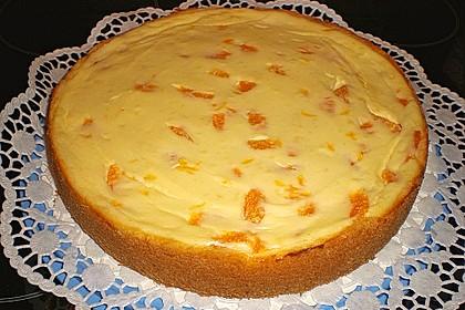 Mandarinen - Schmand - Pudding - Kuchen 28