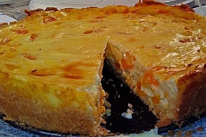 Mandarinen - Schmand - Pudding - Kuchen 50