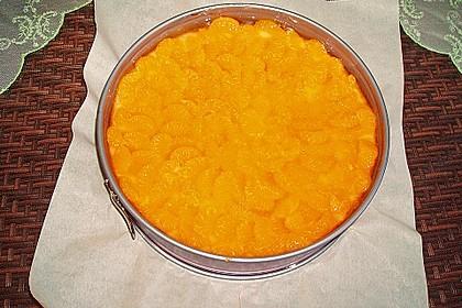Mandarinen - Schmand - Pudding - Kuchen 65