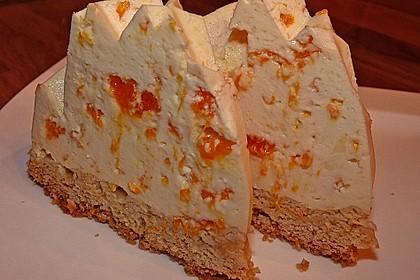 Mandarinen - Schmand - Pudding - Kuchen 13