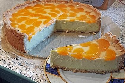 Mandarinen - Schmand - Pudding - Kuchen 19