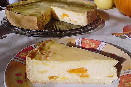 Mandarinen - Schmand - Pudding - Kuchen 29