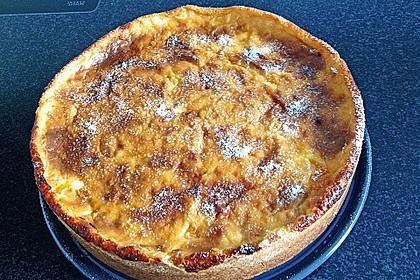 Mandarinen - Schmand - Pudding - Kuchen 41