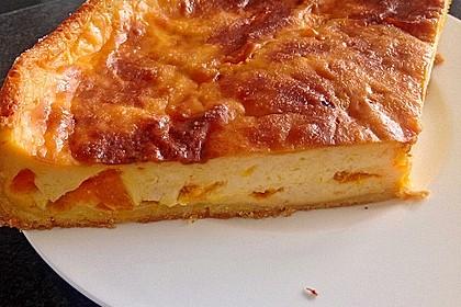 Mandarinen - Schmand - Pudding - Kuchen 58