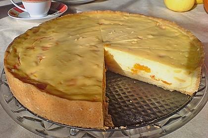 Mandarinen - Schmand - Pudding - Kuchen 34