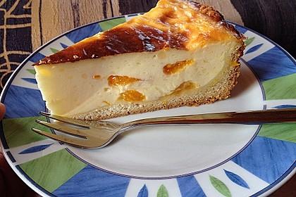 Mandarinen - Schmand - Pudding - Kuchen 15