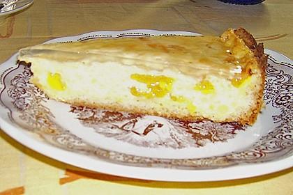 Mandarinen - Schmand - Pudding - Kuchen 69