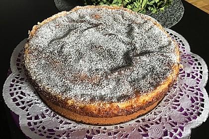 Mandarinen - Schmand - Pudding - Kuchen 37