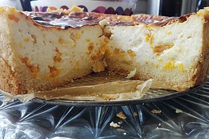 Mandarinen - Schmand - Pudding - Kuchen 24