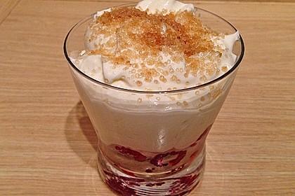 Himbeer - Joghurt - Mascarpone - Dessert 13