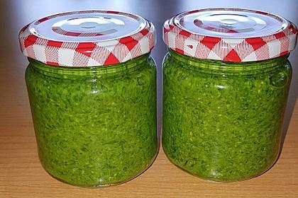 Bärlauch - Pesto 7