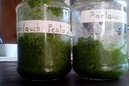 Bärlauch - Pesto 17