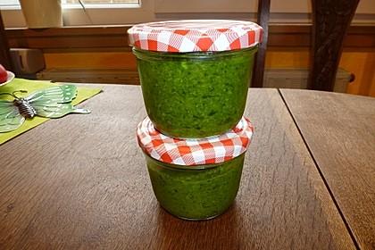 Bärlauch - Pesto 11