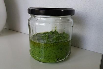 Bärlauch - Pesto 5