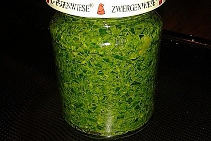 Bärlauch - Pesto 8