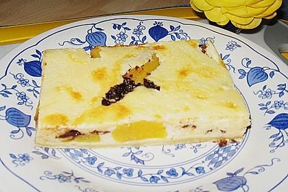 Pfirsich - Mandarinen Kuchen