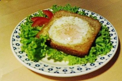 Egg in a basket 50