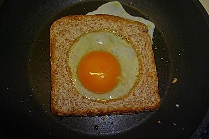 Egg in a basket 31