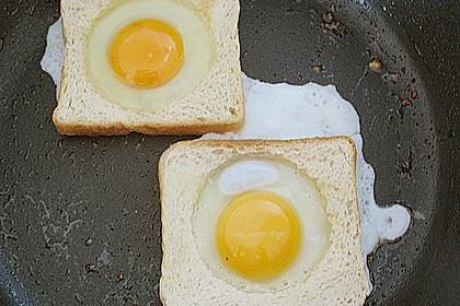 Egg in a basket 23