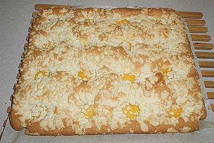 Eierlikör - Streuselkuchen 72