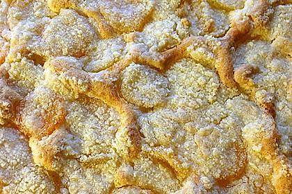 Eierlikör - Streuselkuchen 92