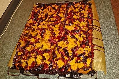 Zwetschgenkuchen vom Blech 15
