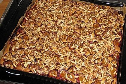 Zwetschgenkuchen vom Blech 4