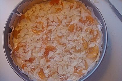 Amaretto - Pfirsich - Kuchen 3