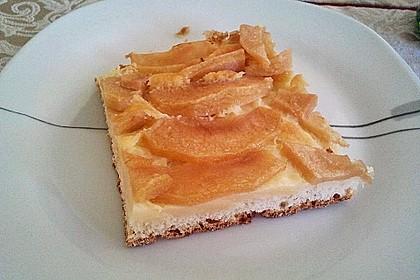 Apfelkuchen mit Pudding 3
