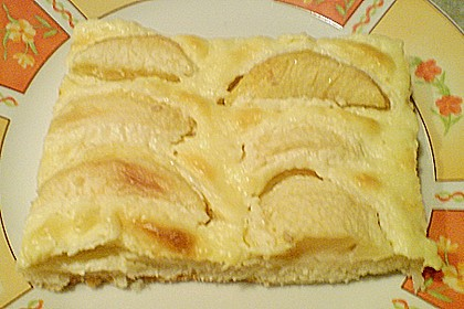 Apfelkuchen mit Pudding 8