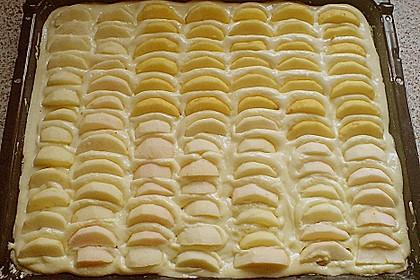 Apfelkuchen mit Pudding 9
