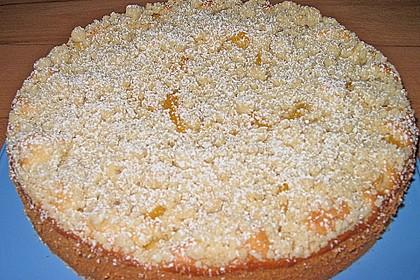 Marillen (Aprikosen) - Rahmkuchen mit feinen Streuseln 29