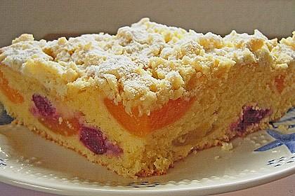 Marillen (Aprikosen) - Rahmkuchen mit feinen Streuseln 25